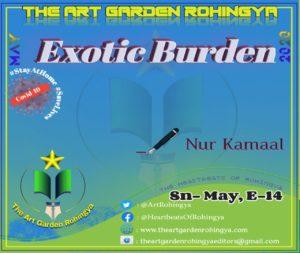 Exotic Burden