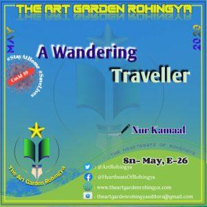 A Wandering Traveler